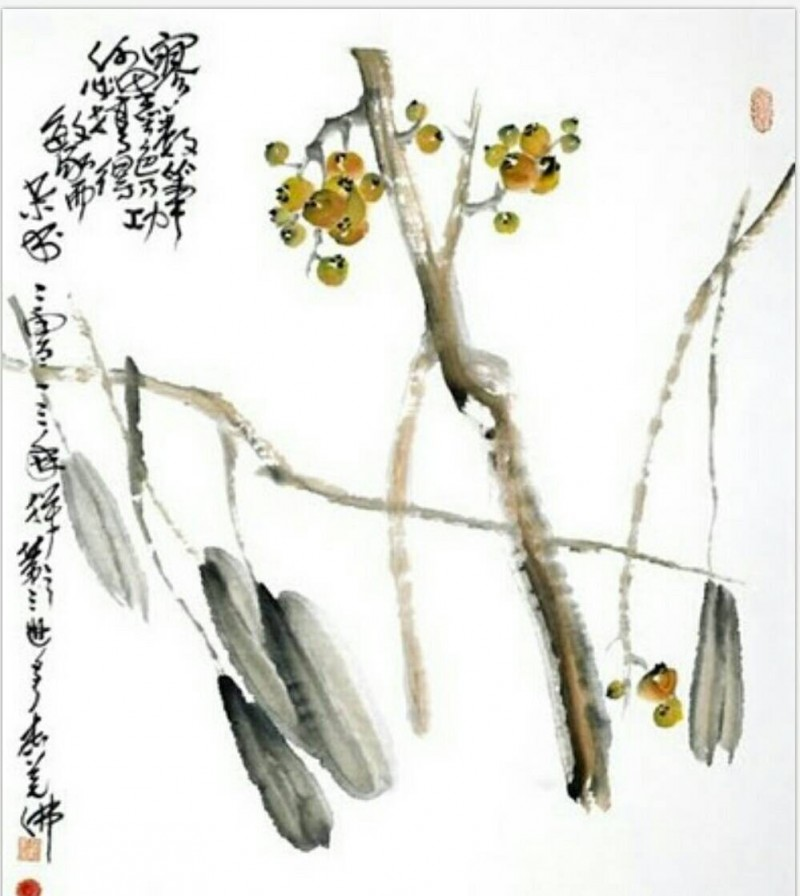 H.H.第三世多杰羌佛-《枇杷》