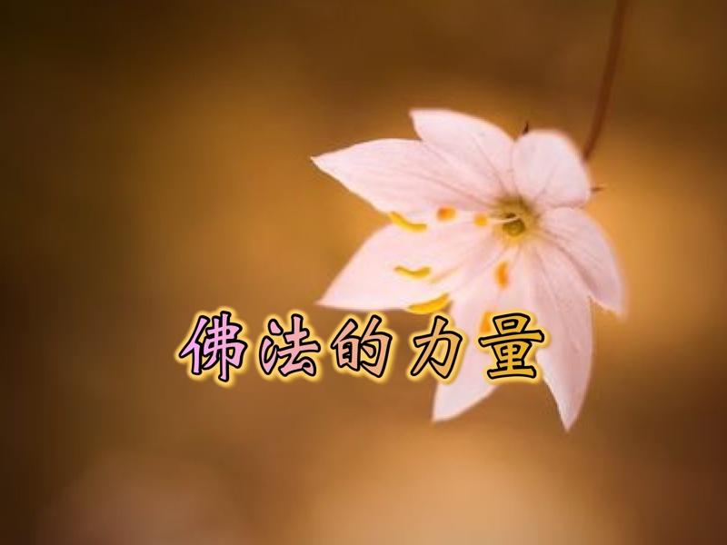 佛法的力量-感恩南無第三世多杰羌佛