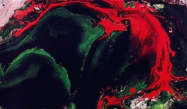 H.H.第三世多杰羌佛 現代畫欣賞 《聖曇花》